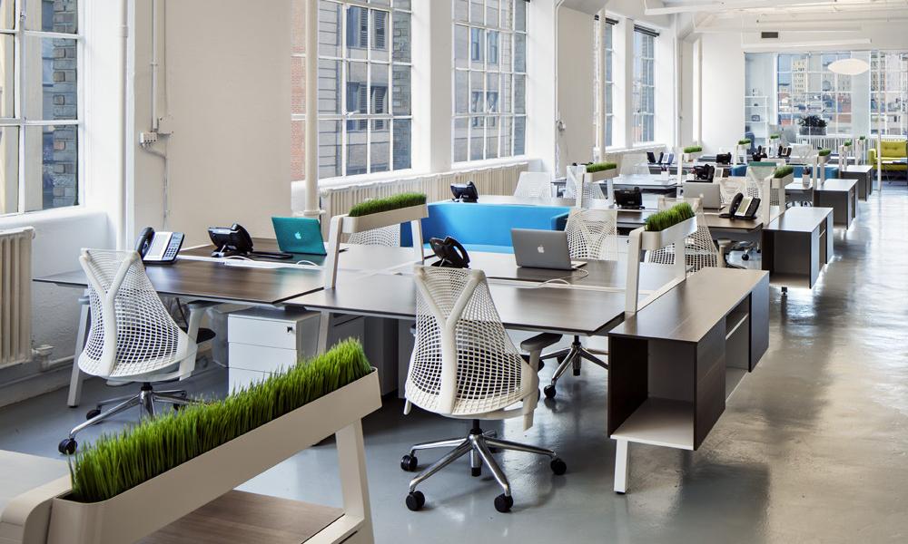 Những mẫu thiết kế văn phòng công ty nhỏ và những lưu ý cần biết